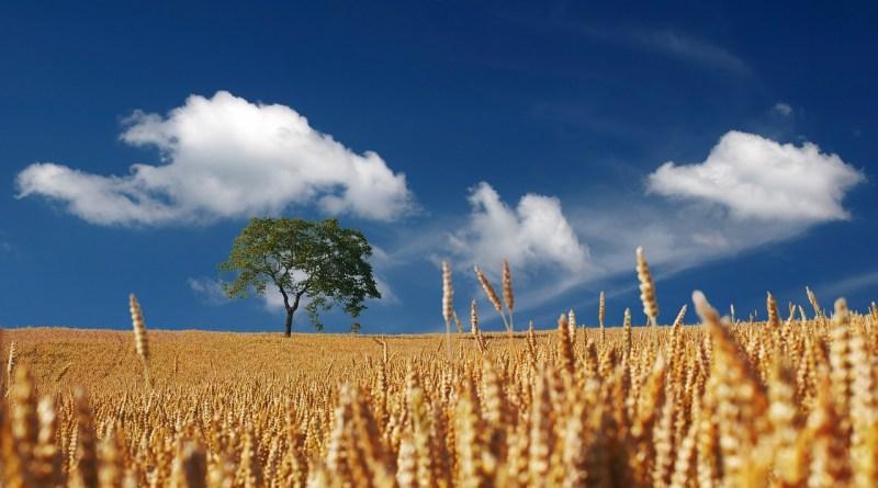 Turismo rurale: dalla Regione Emilia-Romagna oltre 1 milione di euro