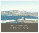 Dove ci incontriamo, tra l'Asinara e i campi